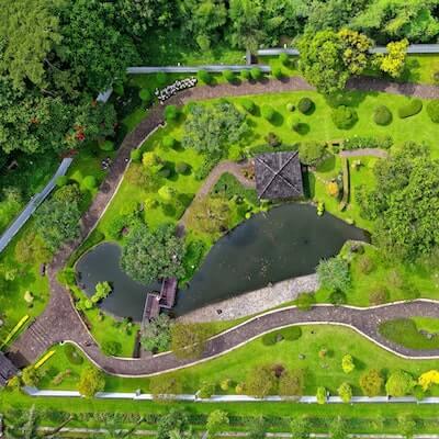 landscape design services 2